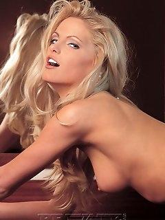 Elegant Nylon Porn